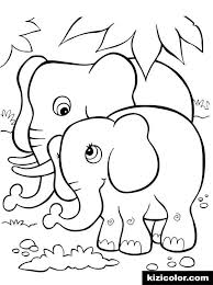 animals elephant 8 coloring page various coloring pages