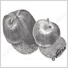 Apple Wall Decor Kitchen Apples Still Life Study Pencil Drawing Art Original Artwork