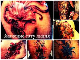 значение тату лилия фото примеры готовых рисунков татуировки на