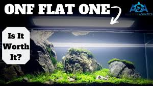 Onf Flat One Light Onf Flat One Aquarium Light Review