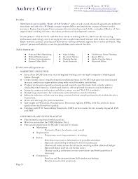 Hotel Resume Example Director Of Sales Examples Hospitality Dayjob