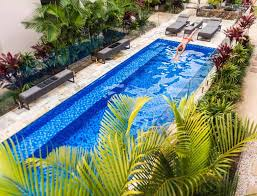 pool friendly plants