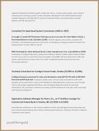 Summary Of Skills Resume Stunning Accounts Receivable Skills Resume Fresh Resume Professional Summary