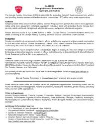 Plain Text Resume Sample Text Example Resume Free Resume Creator ...