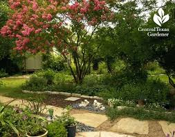 central texas landscaping ideas creating tomorrows garden today central texas garden plans