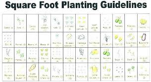 Garden Design Planner Sutterbuttescapca Info