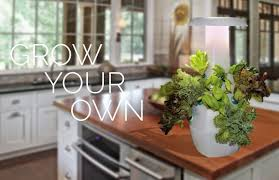 Kitchen Gardening 15 Coolest Gadgets For Your Kitchen Garden