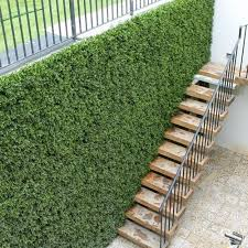 outdoor artificial grass wall