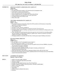 Claims Assistant Resume Sample Risk Assistant Resume Samples Velvet Jobs 23