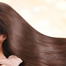 「髪」の画像検索結果