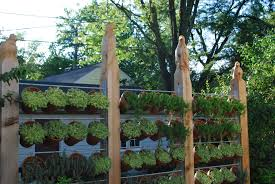 Glancing Cedar Fence Posts Privacy Fencing Dirt in Privacy Fence Screen