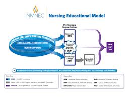 Adn Vs Bsn Apin Project New Mexico Nepin National Education In Nursing