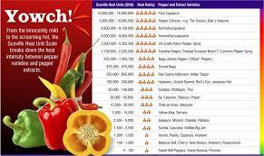 Pepper Level Chart Measuring Hot Sauce Heat Level Chettys Hot Sauce