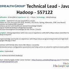 Hadoop Developer Resume Custom Hadoop Hive Resume Quirky Big Data Hadoop Developer Resume Sample