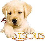 """Résultat de recherche d'images pour """"petits gifs chien"""""""