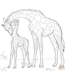 Small Picture Baby Giraffe and Mother coloring page Free Printable Coloring Pages