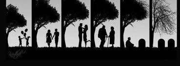 reality of life facebook profile timeline cover ultimate collection of top 50 best love facebook cover