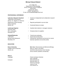 Resume Writing Samples First Job Resume Template Best Business No Experience Sample Free 50