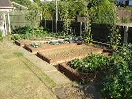 Small Picture backyard vegetable garden design 004 creating perfect garden