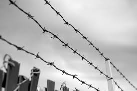 Barbed Wire Fence by Brime on DeviantArt