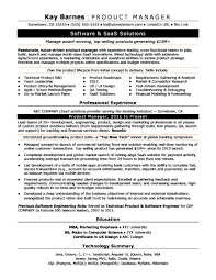Product Manager Resume Sample Monster Com It Program Examples