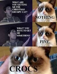 Grumpy cat on Pinterest | Grumpy Cat Meme, Grumpy Cat Christmas ... via Relatably.com