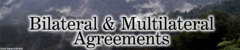 Image result for multilateral agreement