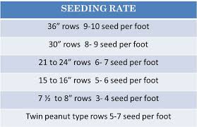 Soybean Planting Plantation Seed Update