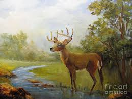 white tail deer painting white tail deer by barbara haviland
