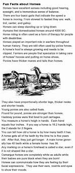 best 25 facts about horses ideas on interesting facts about horses about horse and interesting horse facts