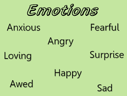 What Are Primary And Secondary Emotions Betterhelp