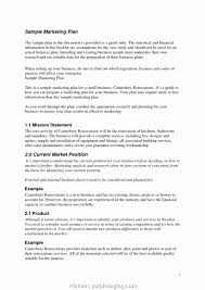 example of small business plan pdf professional business plang luxury sample to develop small format techniques best plans marketing photo concept