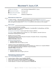 Resume Templates For Career Change Career Change Resume Summary