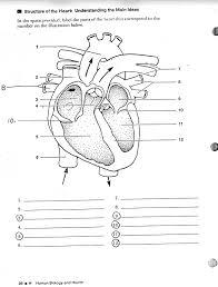 blank human heart diagram learning me heart heart blank human heart diagram