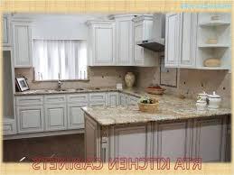 rta kitchen cabinets review elegant kitchen cabinets euro rta kitchen cabinets reviews