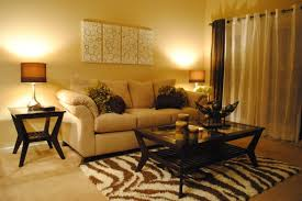 College Living Room Decorating Ideas Impressive Design