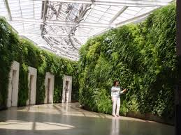 ... Contemporary Home Interior Decoration Using Various Indoor Green Wall :  Contempo Picture Of Home Interior Decoration ...