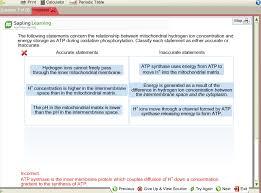 Print Calculator L Periodic Table Incorrect R Ques... | Chegg.com
