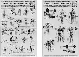 Weider Exercise Chart Weider X Factor Workout Chart Pdf