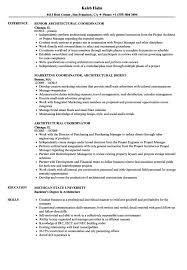 Social Media Coordinator Resume Resumes Manager Objective Sample