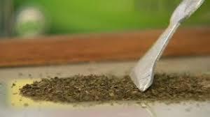 Видео урок Контрольная закупка Молочный шоколад  Контрольная закупка Пакетированный зеленый чай 22 10 2013