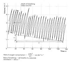 Oxygen Consumption Chart Using A Spirometer To Investigate Human Lung Function