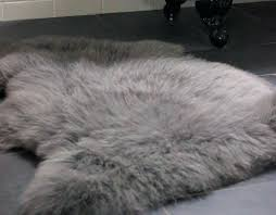 grey lambskin rug slate grey sheepskin rug grey sheepskin rug ireland