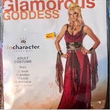 New Greek Goddess Costume Nwt