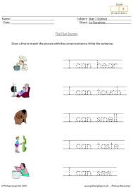 furthermore Let's Explore Your 5 Senses further Addition worksheets free printable for teachers and kids worksheet likewise  further  likewise Five Senses   Instant Worksheets in addition Five Senses Activity for kindergarten and 1st Grade   Taste in addition Best Photos of 5 Senses Preschool Printables   My Five Senses moreover five sense worksheet  NEW 90 THE FIVE SENSES WORKSHEET PDF also Kindergarten Five Senses Worksheet Printable   Teaching Ideas further My Sight SenseWorksheets. on senses worksheets kindergarten