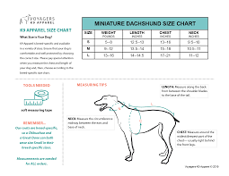 Mini Dachshund Size Chart Miniature Dachshund Size Guide Voyagers K9 Apparel