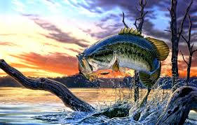 largemouth bass jumping. Simple Largemouth View Original Size With Largemouth Bass Jumping F