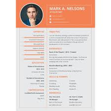 Ideal Resume Format Delectable 40 Best Resume Formats DOC PDF PSD Free Premium Templates