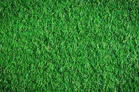 artificial turf texture. The Artificial Grass. For Background And Texture. | Stock Photo Colourbox Turf Texture