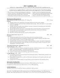 Sample Resume For Merchandiser Job Description Download Retail Merchandiser Resume Sample DiplomaticRegatta 6